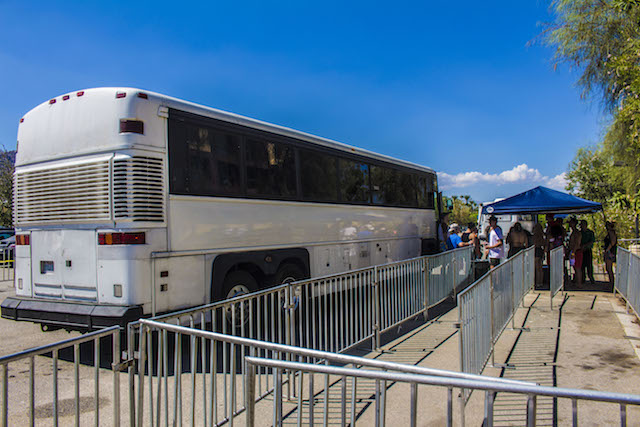 Shuttle buses carting people back and forth at the Splash House Music and Pool Festival